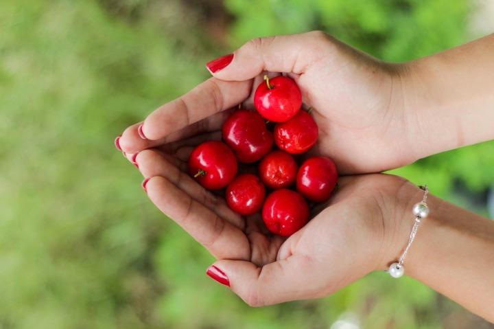 cherries-1082136_1280.jpg